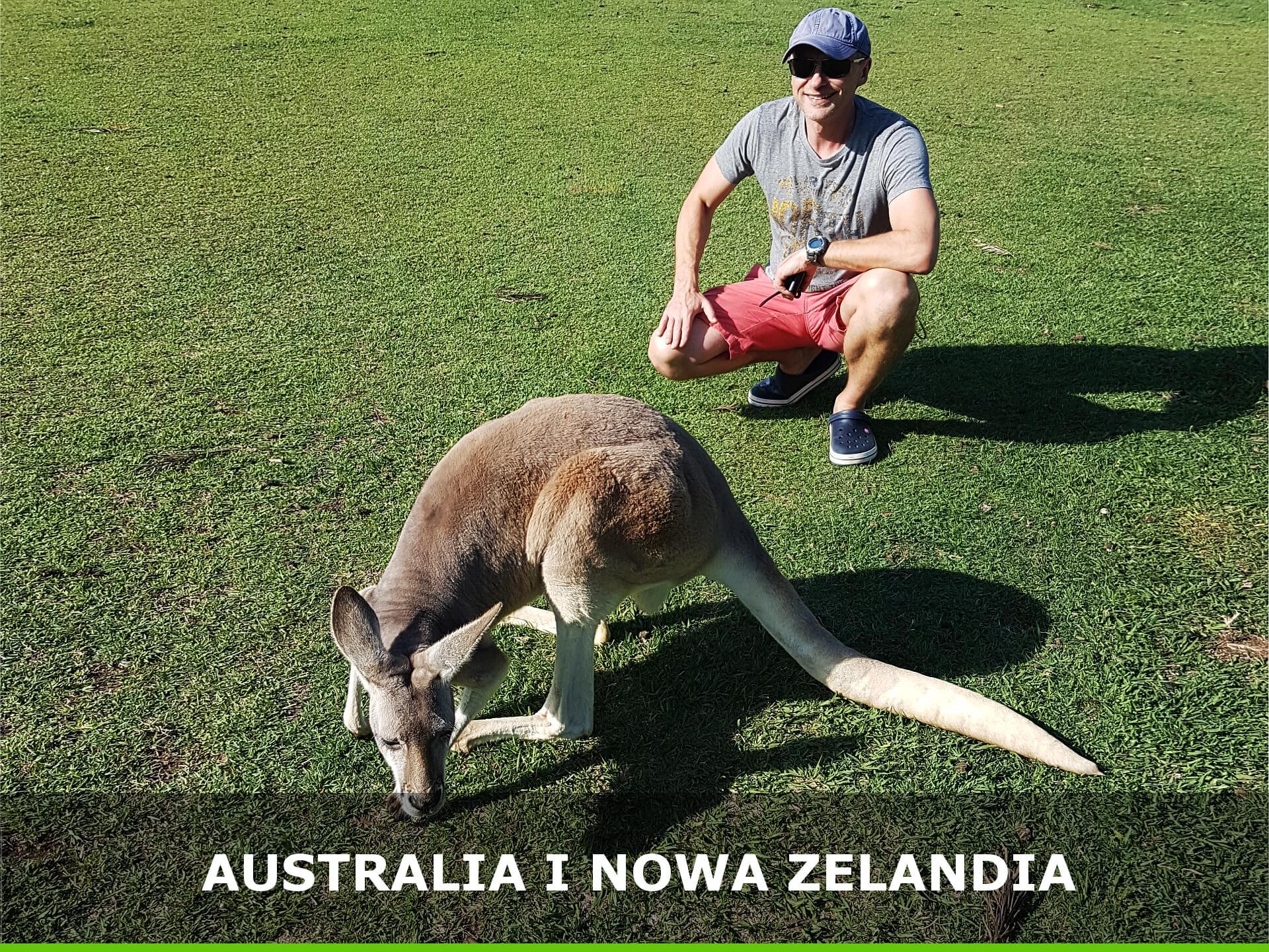 Kangur-Australia