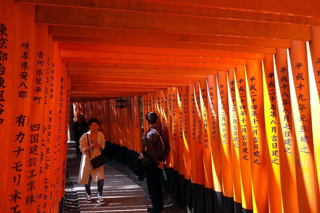 Magiczny tunel z bram Torii