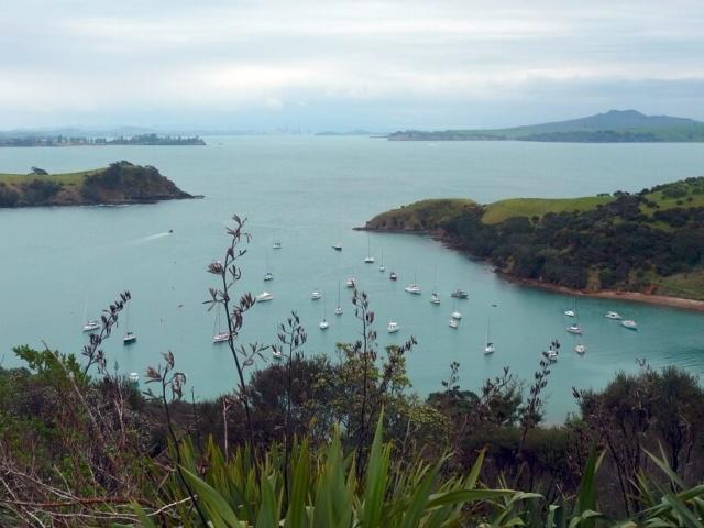 widok na zatokę z zacumowanymi jachtami