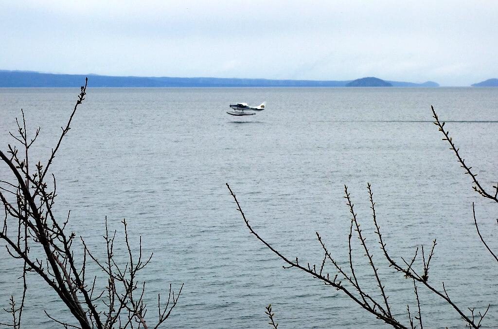 Lądujący hydroplan jest częstym widokiem pomiędzy górzystymi wyspami Nowej Zelandii