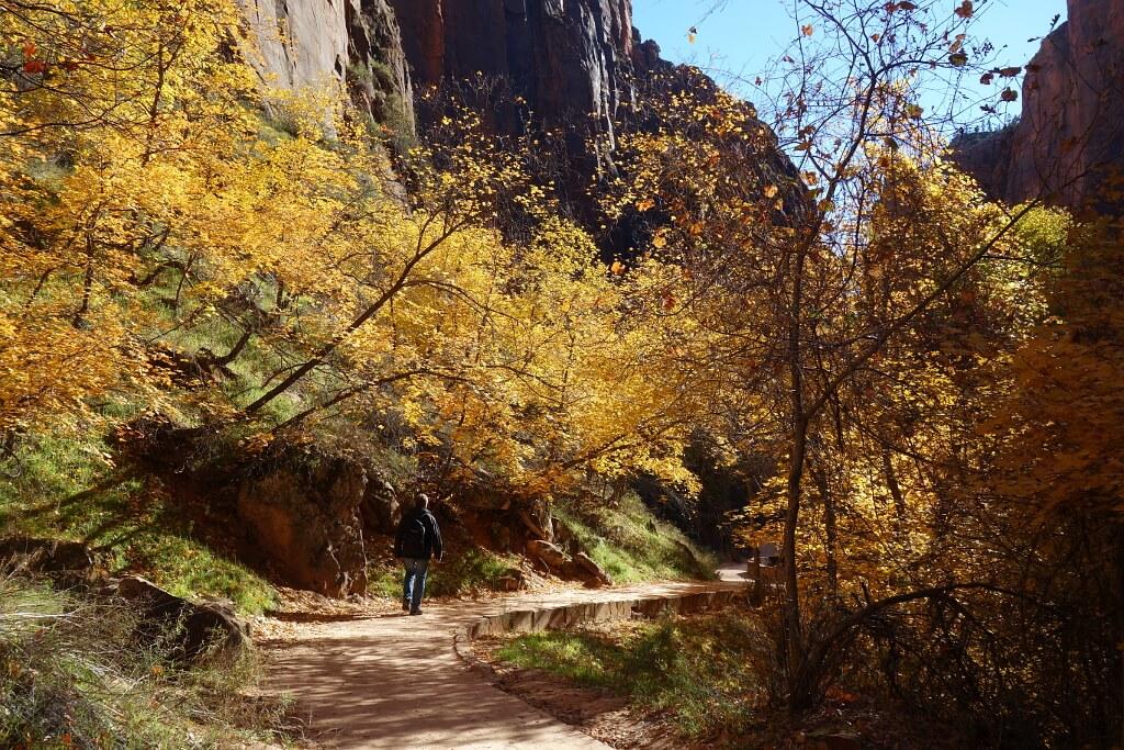jesień w Parku Narodowym Zion