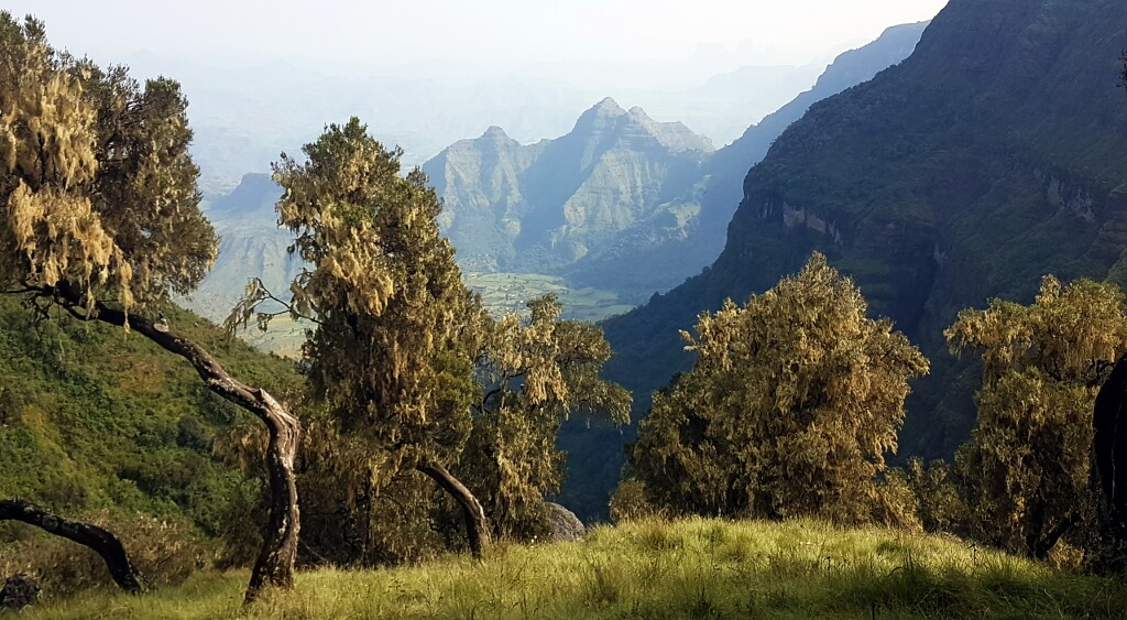 Panorama gór etiopskich