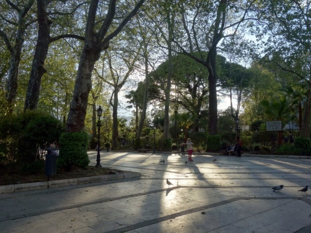 Popołudnie w parku